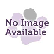 Blue & Black Folding Fabric Soft Crate