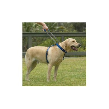 Blue Patento Pet Harnesses for Dogs