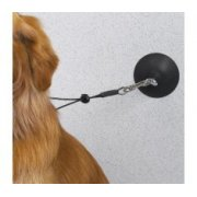 Suction Cup for Security Noose in Grooming Baths