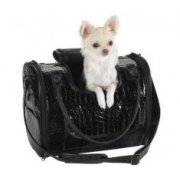 Zack & Zoey Croco Pet Carrier in Black